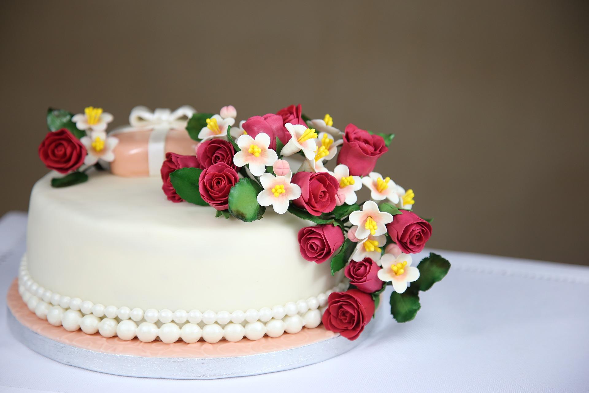 torte-finte